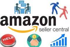 Package: Solve Your Amazon Issues/Grow Your Business - Expert Advice
