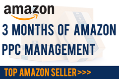 Package: *TOP SELLER* 3 months of Amazon PPC Management