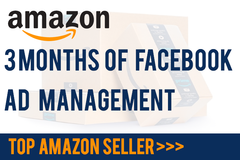 Package: 3 months of Facebook Ad Campaign Management for Amazon