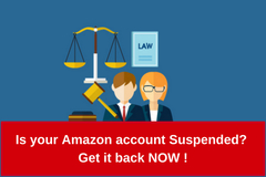 Package: Amazon account SUSPENDED ? Get it back NOW !