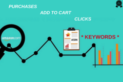 Package: NEW ! ASIN Keyword Report for PURCHASES, Clicks, Add to Cart