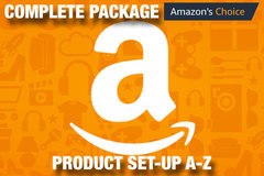 Package: Amazon Business Set Up PPC SEO FBA Consulting United States