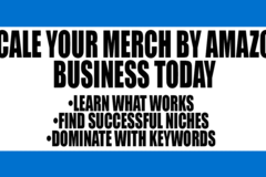 Package: Merch By Amazon Coaching Session