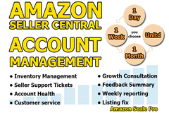 Package: I Will Manage Your Amazon Channel Account for 7 Days!