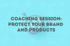 Package: 30min Coaching Session - Protect your Brand and Products
