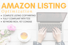 Package: Fully Optimized Amazon Listing (Keywords, Copy, PPC)