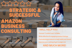 Package: Amazon Consulting Service - Improve Rank, Increase Sales!