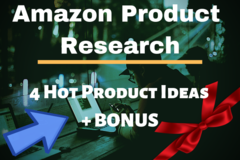 Package: Product Research PLATINUM Package | 4 Product Ideas + BONUS