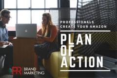 Package: Get The Professionals To Write Your Amazon Plan of Action!