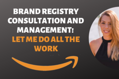 Package: I Will Consult and Manage The Brand Registry Process For You