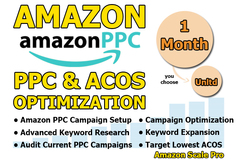 Package: I will Setup/Manage/ Optimize your Amazon PPC 1 Month