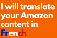 Package: Translate your Amazon content in French