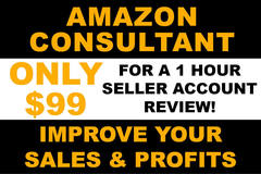 Package: 1 Hour Review Of Your Seller Account To Increase Profits
