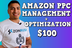 Package: Amazon PPC Management + Optimization