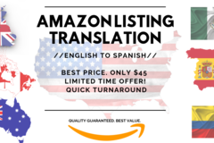 Package: BEST PRICE! English-Spanish Amazon Listing Translation