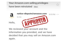 Package: Write Amazon Account Suspension Appeal Letter Plan Of Action