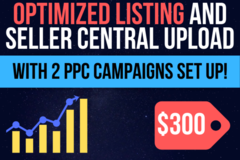 Package: Optimized Listing with Upload & 2 PPC Campaigns Set Up