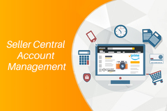 Package: Amazon Seller Central Account Management Consulting per hour