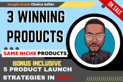 Package: 3 Winning Products Research, $5000/month - SAME CATEGORY