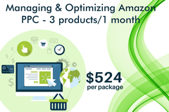 Package: Managing and Optimizing Amazon PPC - 3 products / 1 month