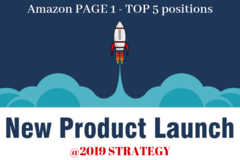 Package: 2019 ULTIMATE PRODUCT LAUNCH STRATEGY