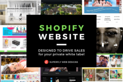 Package: SHOPIFY WEBSITE/ONLINE STORE FOR YOUR PRIVATE WHITE LABEL