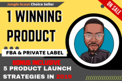 Package: 1 Winning Product, $5000/Month - CUSTOM ORDER