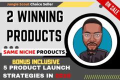 Package: 2 Winning Products: $5,000+/month - CUSTOM ORDER