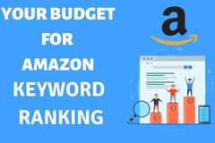 Package: Amazon Top3 Positions - Keyword Ranking Budget Calculator