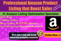 Package: **SALE** Amazon Listing Optimization-Back-End Terms Included