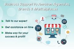 Package: Business Support to Amazon Agencies, Brands and Marketplaces