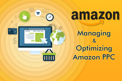 Package: Managing and Optimizing Amazon PPC of 2 products for 1 month