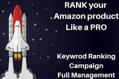Package: Professional Keyword Ranking Campaign - Full Management