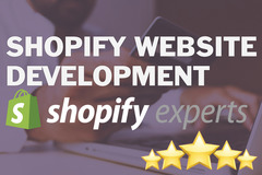 Package: High Quality E-commerce Shopify Website 100% Responsive