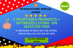Package: 3 PROFITABLE PRODUCTS + 1 OPTIMIZED AMAZON LISTING