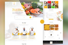 Package: Professional Website/ E-Commerce Store for Small Business