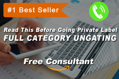 Package: Full Amazon Category Ungated In 72 Hours + Free Consulting