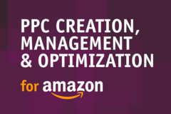 Package: Expert PPC Creation, Optimization, and Management - 1 Month
