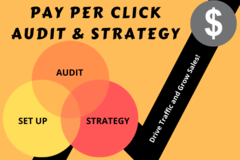 Package: PPC AUDIT & STRATEGY RECOMMENDATION to INCREASE SALES