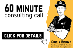 Package: 60 Minute Consulting Call | FBA/SFP, PPC, Account Management