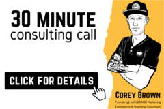 Package: 30 Minute Consulting Call | FBA/SFP, PPC, Account Management