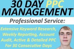 Package: PRO Amazon PPC Management (30 Days, 1 SKU)
