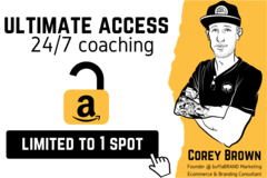 Package: **Exclusive** 24/7 Coaching & Consulting Access | 1 Month