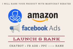 Package: Launch and Rank with Chatbot and FB Ads