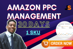 Package: Amazon PPC Management 30 Days 1 SKU