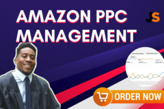 Package: PPC Set Up & Optimization   (No management)