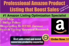 Package: Custom offer, Amazon listing optimization (3 products)