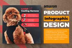 Package: Amazon A+ Infographics