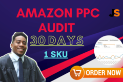 Package: Amazon PPC Audit