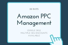 Package: Active Amazon PPC Management 30 Days 1 SKU